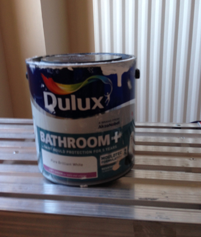Anti-mould paint